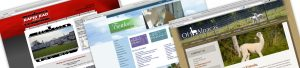 Web Design with WordPress, Genesis, and Dynamik